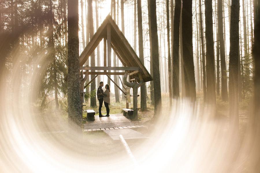 sesja narzeczenska w lesie o wschodzie słońca